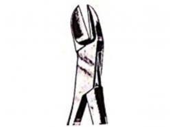 رانژور استخوانی لیستون سرکج Liston